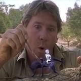 Steve Irwin: Monster fucker