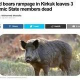 Based porkers removes kebab