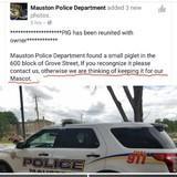 Cops got jokes