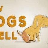 Doggo vision