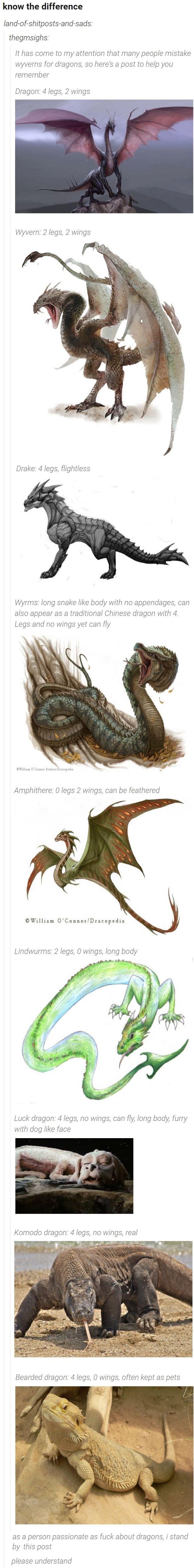 dragonfuckers. .. Krayt dragon: 8 legs, 0 wings, sand everywhere, you're dragonfuckers Krayt dragon: 8 legs 0 wings sand everywhere you're