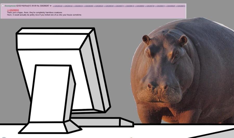 Hippo propaganda. . Hippo propaganda