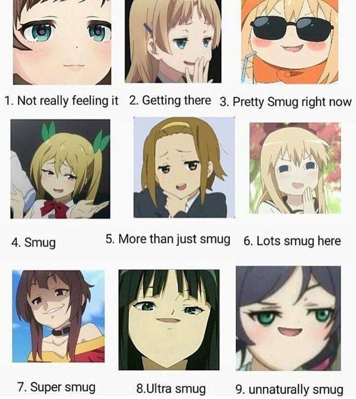 "How Ya Feeling FJ?. . 7. Super smug smug 9. unnaturally smug. mousesama used ""roll 1, 1-9""mousesama rolls 4 Anime manga smug Face"