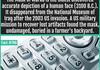 Random Interesting Facts Compilation