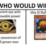 Floofy boi